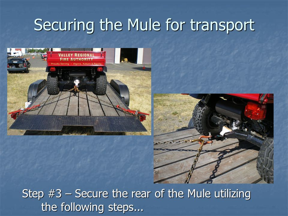 Securing the Mule for transport