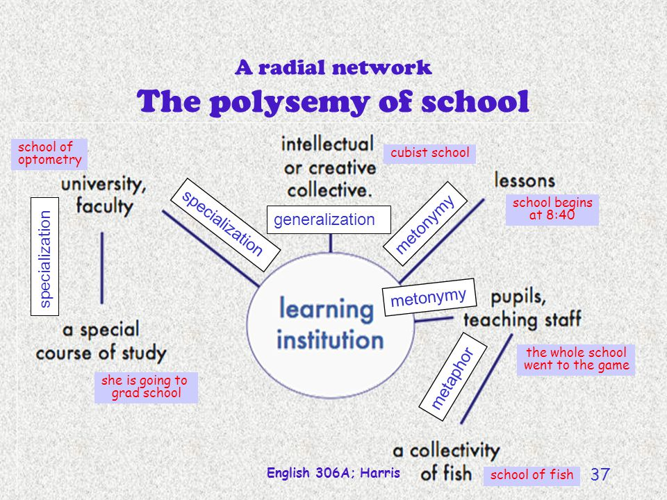 A radial network The polysemy of school