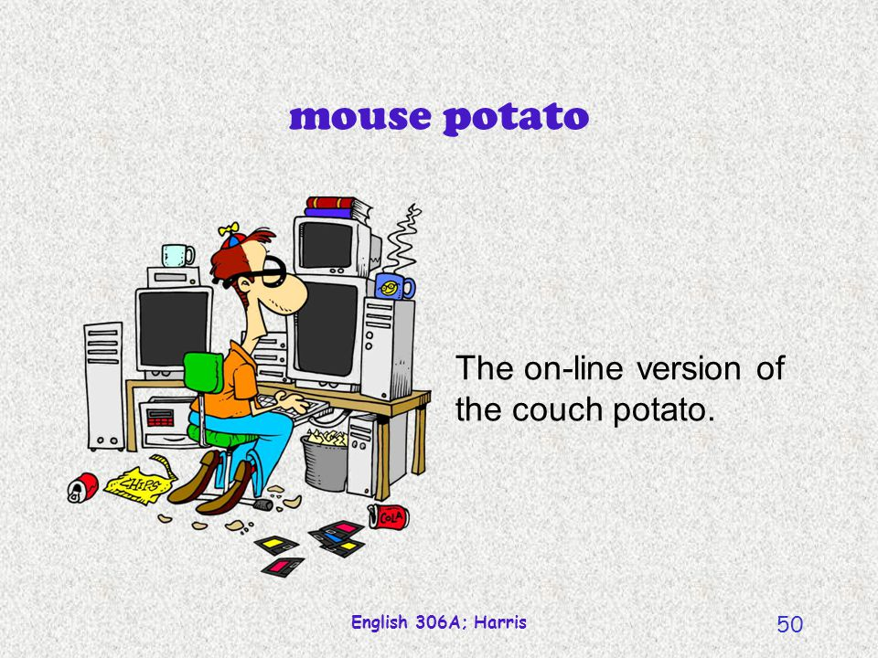 mouse potato The on-line version of the couch potato.