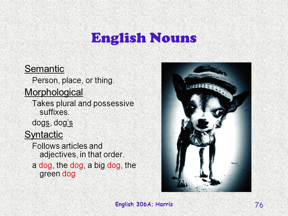 English Nouns Semantic Morphological Syntactic