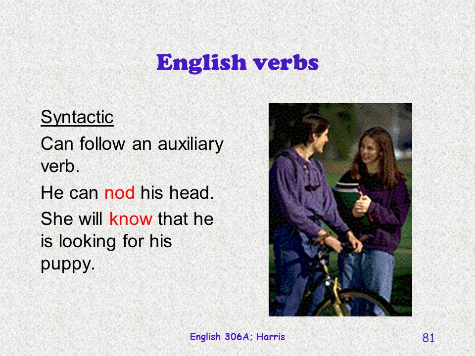 English verbs Syntactic Can follow an auxiliary verb.