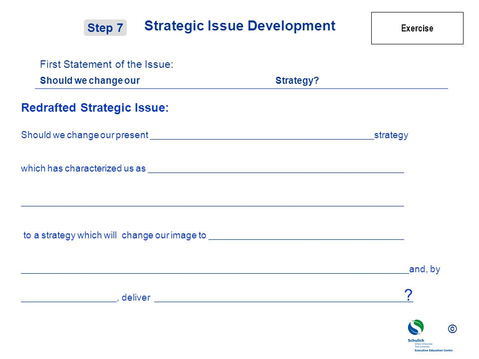 Strategic Issue Development