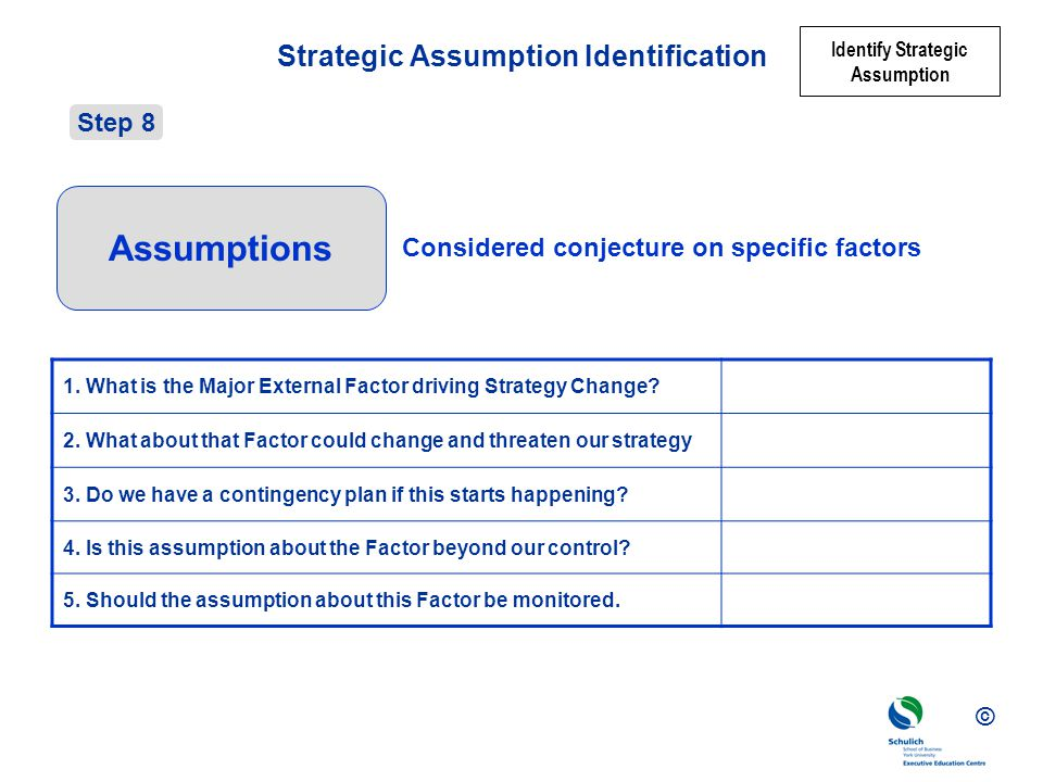 Strategic Assumption Identification