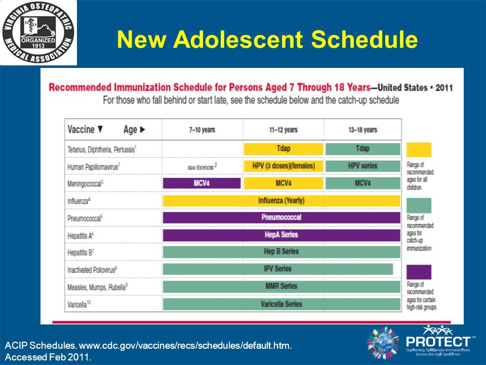 New Adolescent Schedule