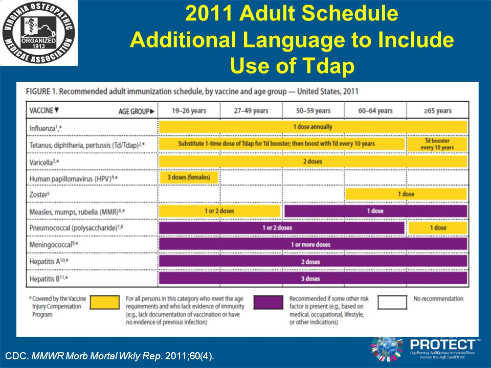 2011 Adult Schedule Additional Language to Include Use of Tdap