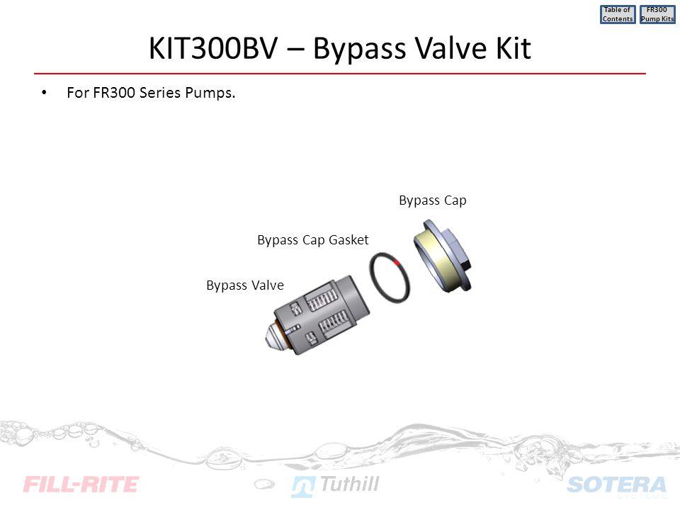 KIT300BV – Bypass Valve Kit