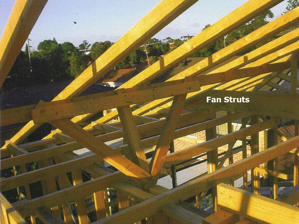Fan Struts