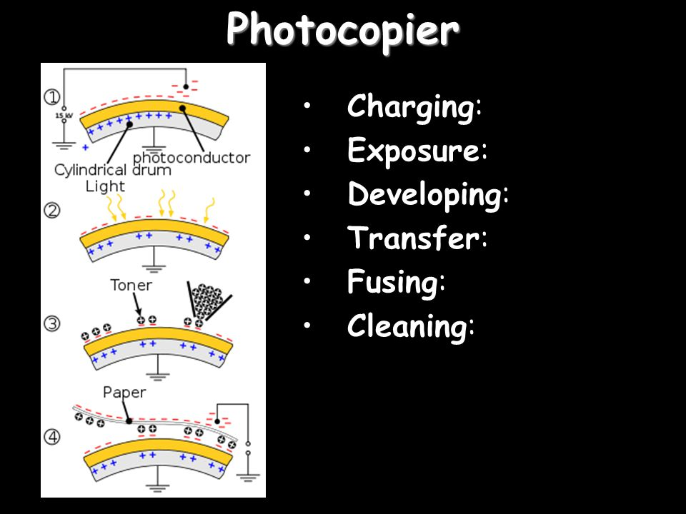 Photocopier Charging: Exposure: Developing: Transfer: Fusing: