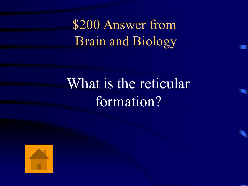 $200 Answer from Brain and Biology