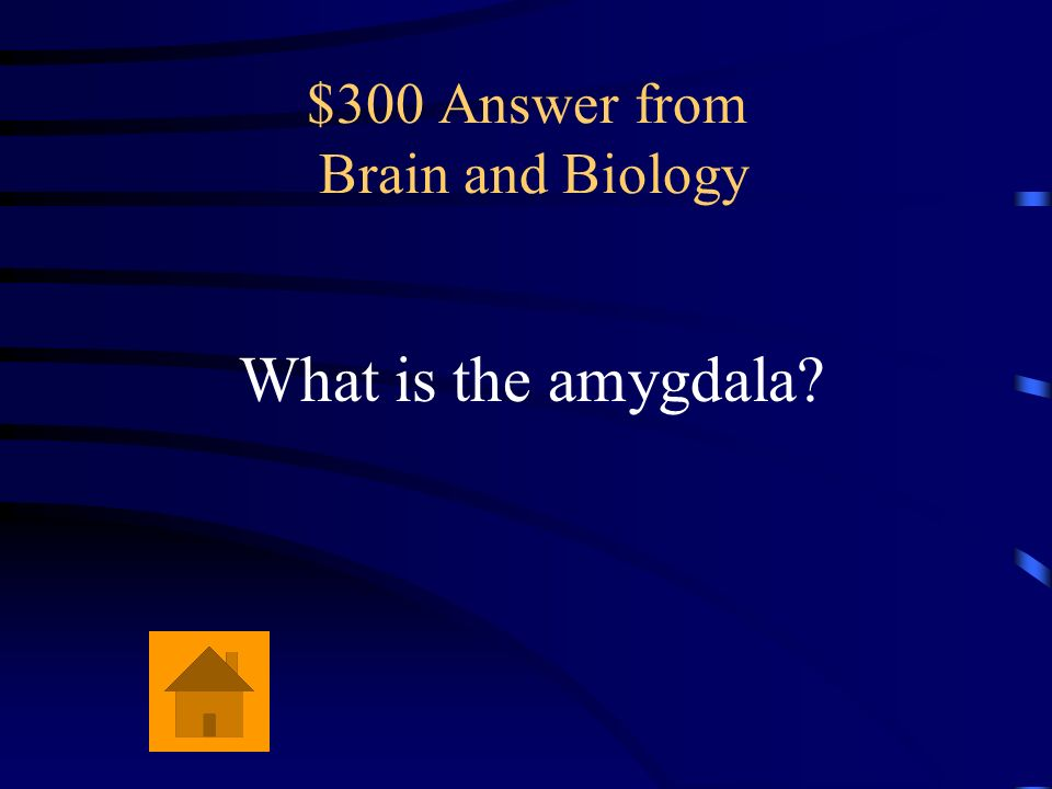 $300 Answer from Brain and Biology