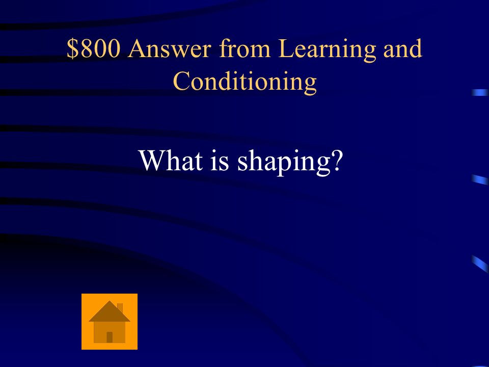 $800 Answer from Learning and Conditioning