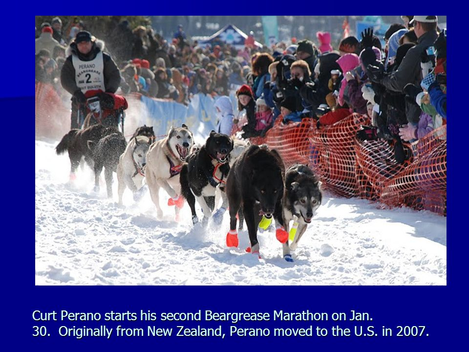 Curt Perano starts his second Beargrease Marathon on Jan. 30
