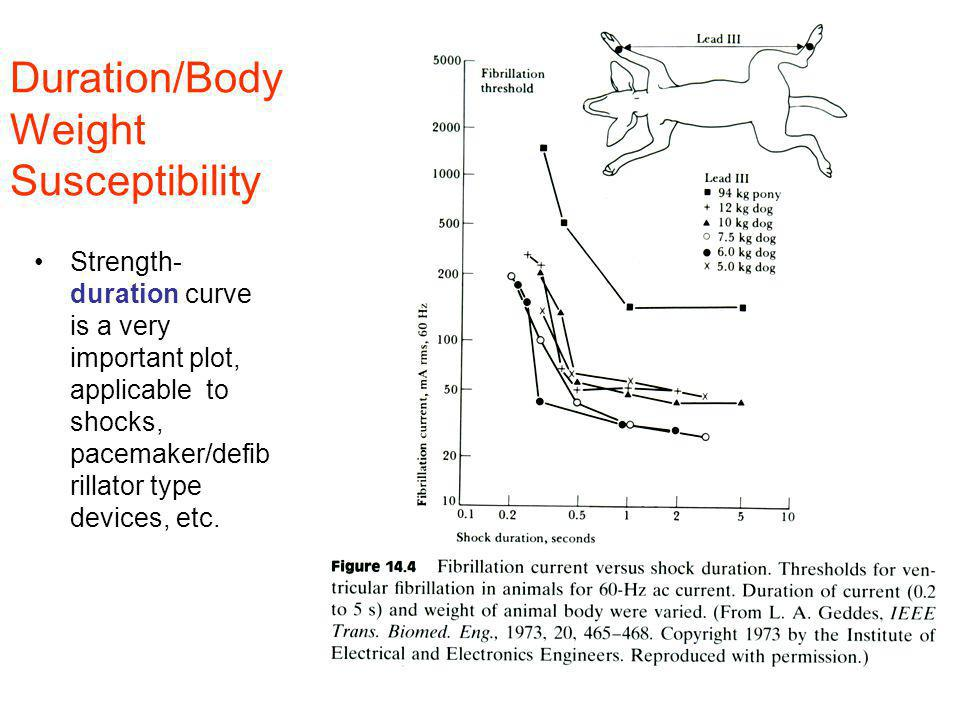 Duration/Body Weight Susceptibility