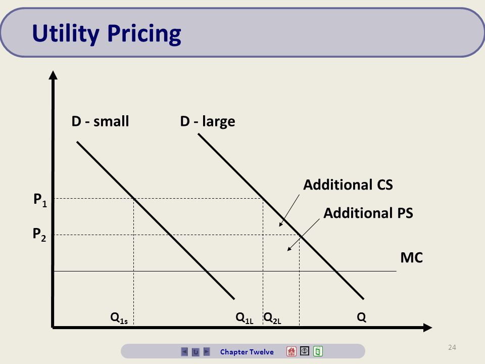 Utility Pricing D - small D - large Additional CS P1 Additional PS P2