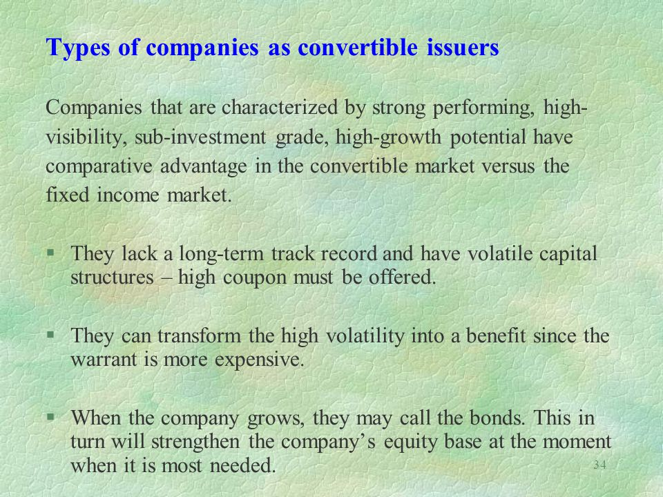 Types of companies as convertible issuers