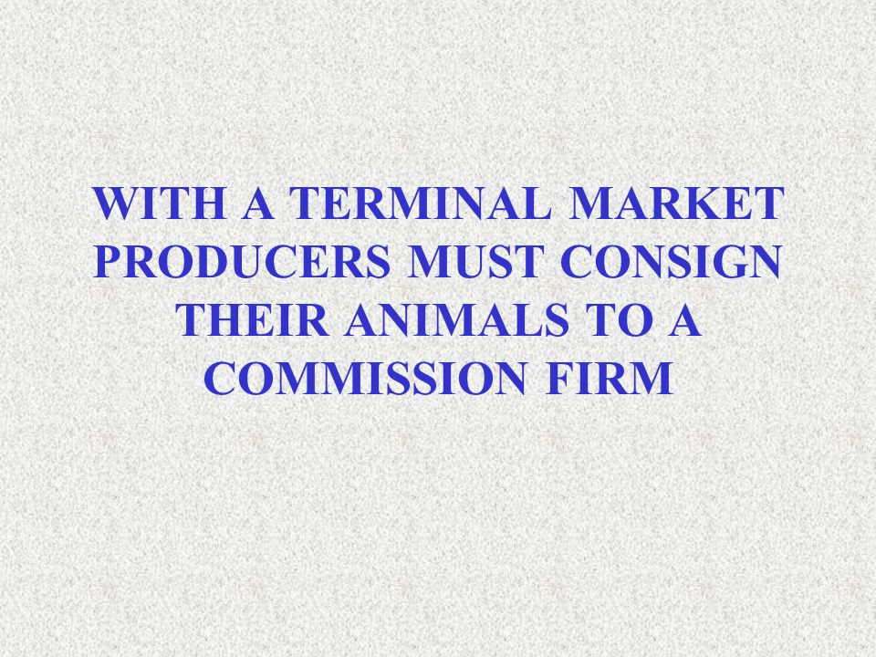 WITH A TERMINAL MARKET PRODUCERS MUST CONSIGN THEIR ANIMALS TO A COMMISSION FIRM