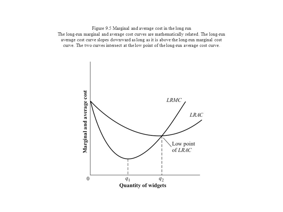 Figure 9.5 Marginal and average cost in the long run The long-run marginal and average cost curves are mathematically related.