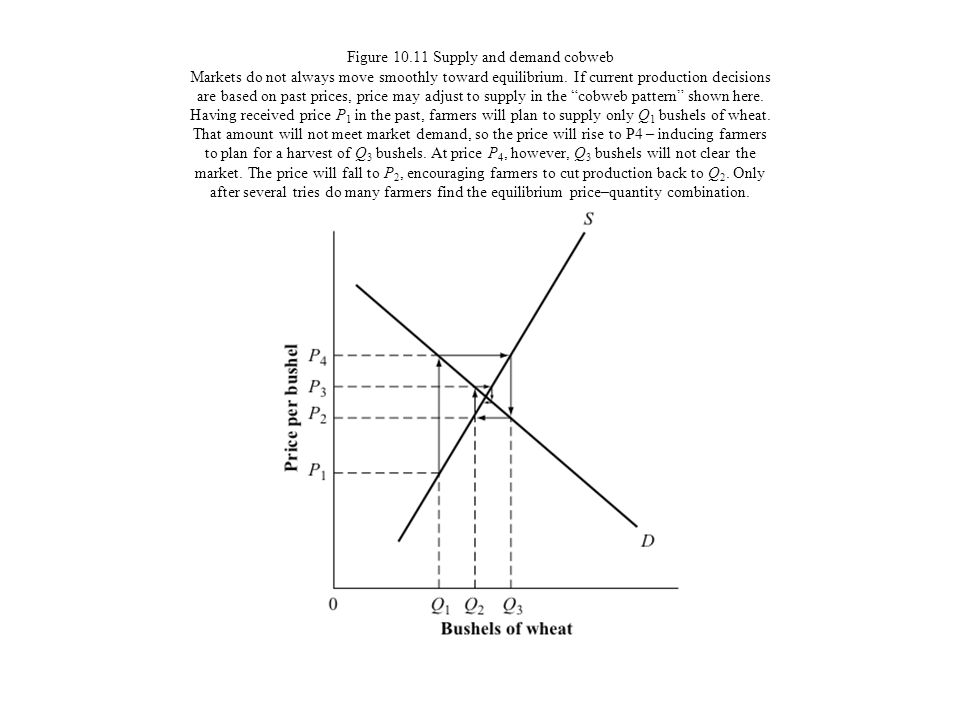 Figure 10.11 Supply and demand cobweb Markets do not always move smoothly toward equilibrium.