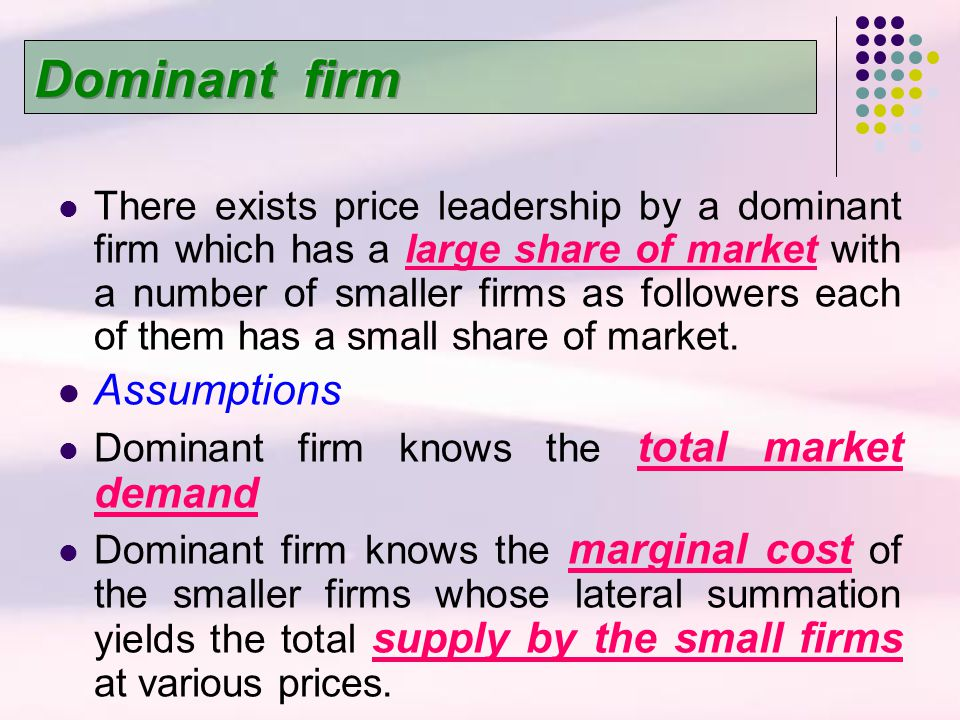 Dominant firm Assumptions