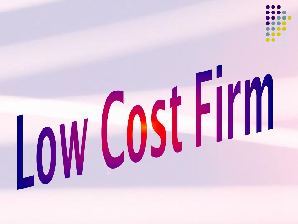 Low Cost Firm