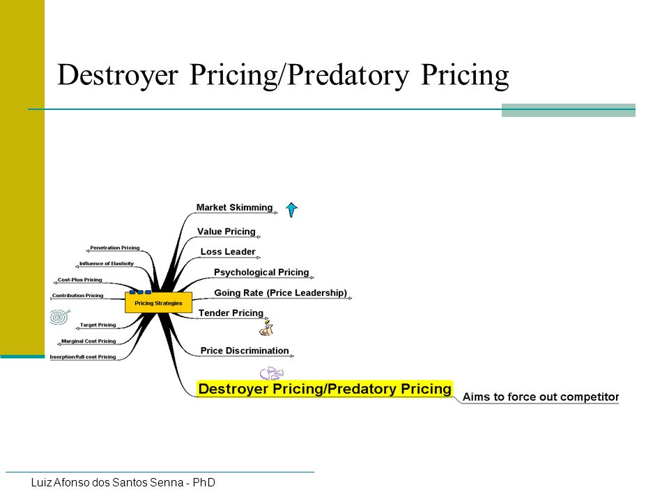 Destroyer Pricing/Predatory Pricing