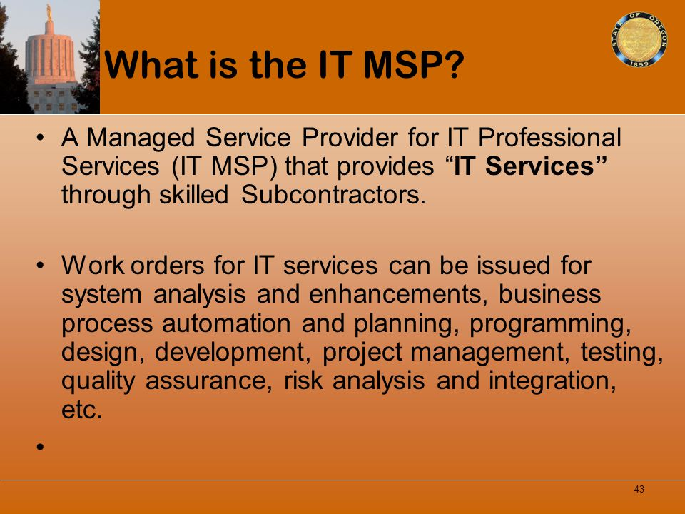 What is the IT MSP A Managed Service Provider for IT Professional Services (IT MSP) that provides IT Services through skilled Subcontractors.