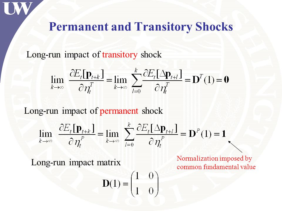 Permanent and Transitory Shocks