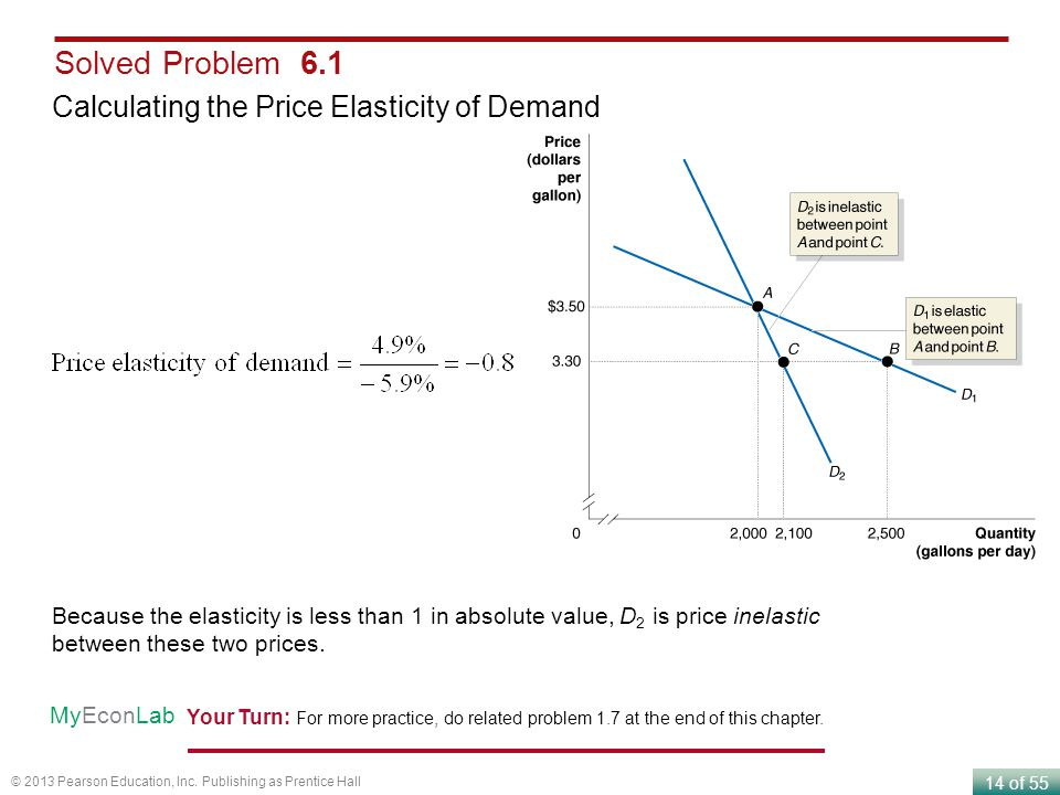 Solved Problem 6.1 Calculating the Price Elasticity of Demand