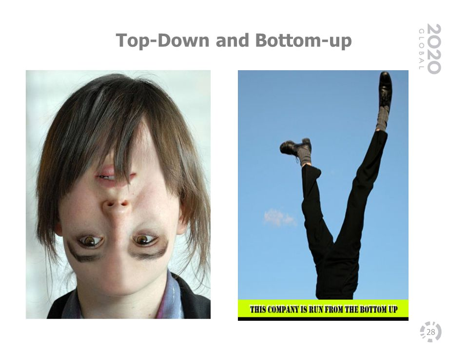 Top-Down and Bottom-up