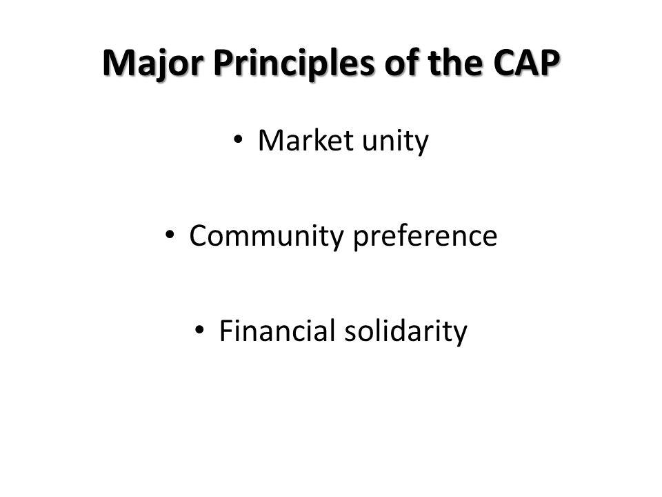 Major Principles of the CAP