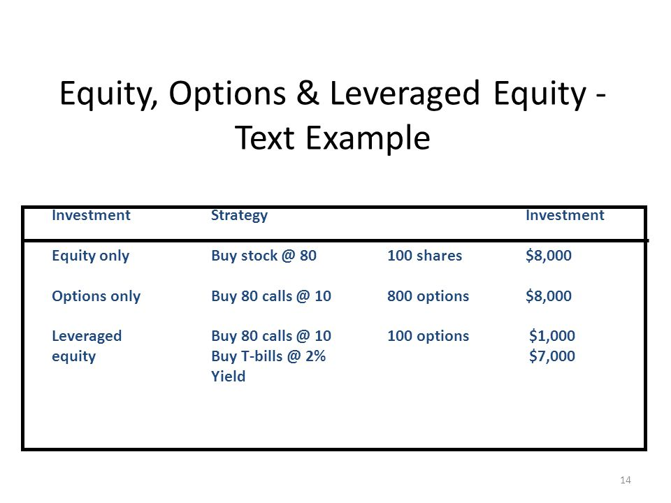 Equity, Options & Leveraged Equity - Text Example