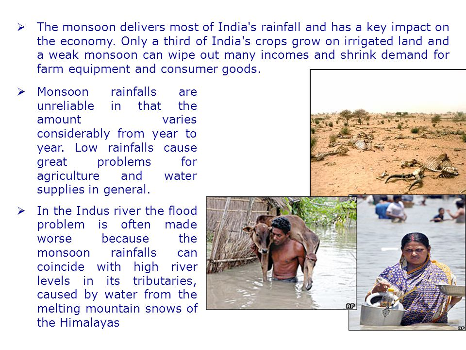 The monsoon delivers most of India s rainfall and has a key impact on the economy. Only a third of India s crops grow on irrigated land and a weak monsoon can wipe out many incomes and shrink demand for farm equipment and consumer goods.
