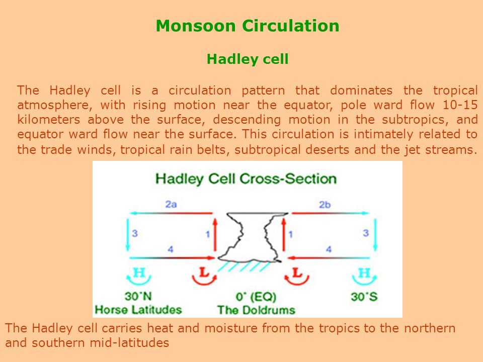 Monsoon Circulation Hadley cell