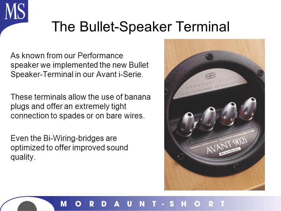 The Bullet-Speaker Terminal