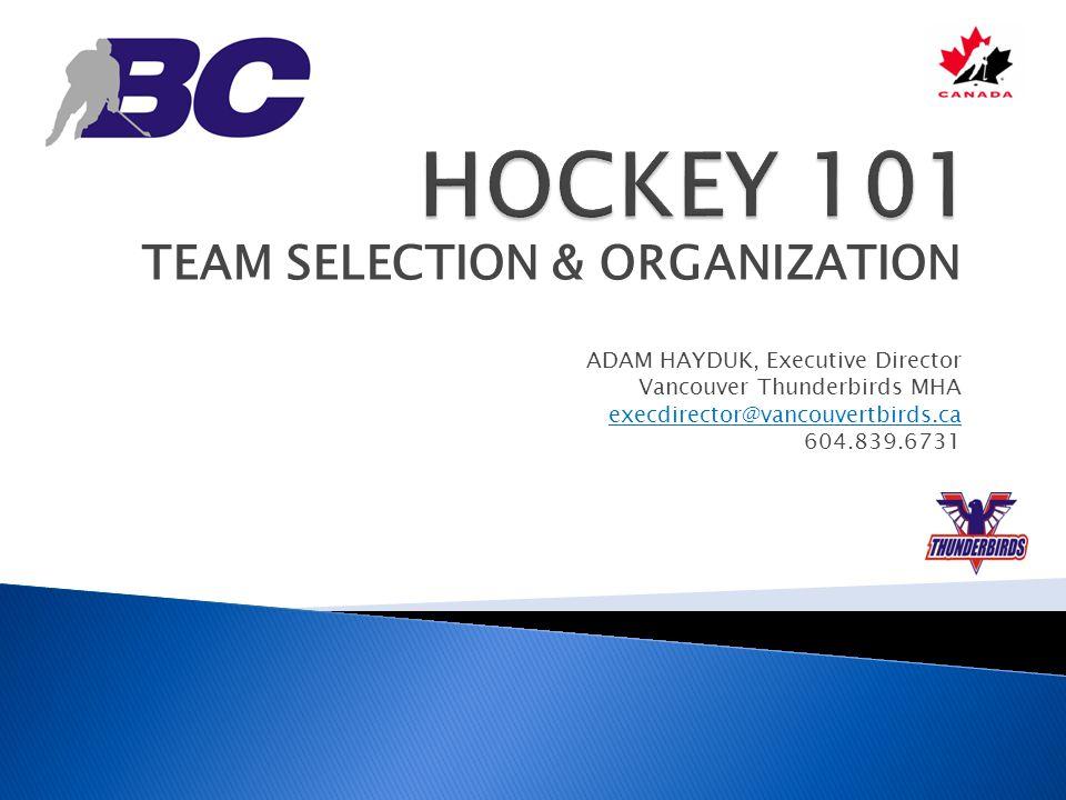 HOCKEY 101 TEAM SELECTION & ORGANIZATION