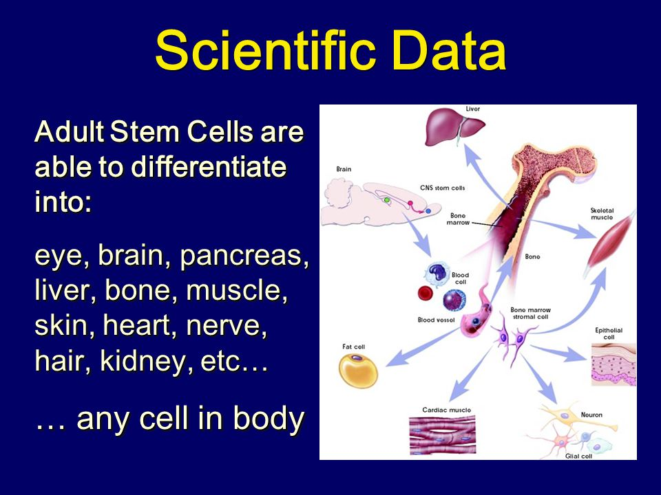 Scientific Data … any cell in body