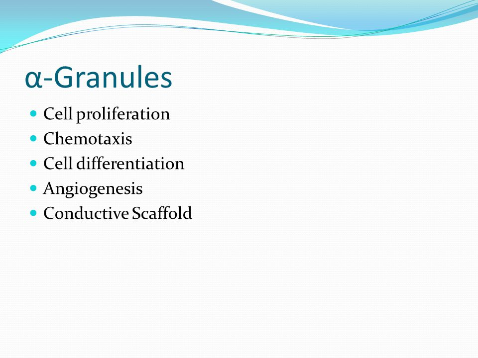α-Granules Cell proliferation Chemotaxis Cell differentiation