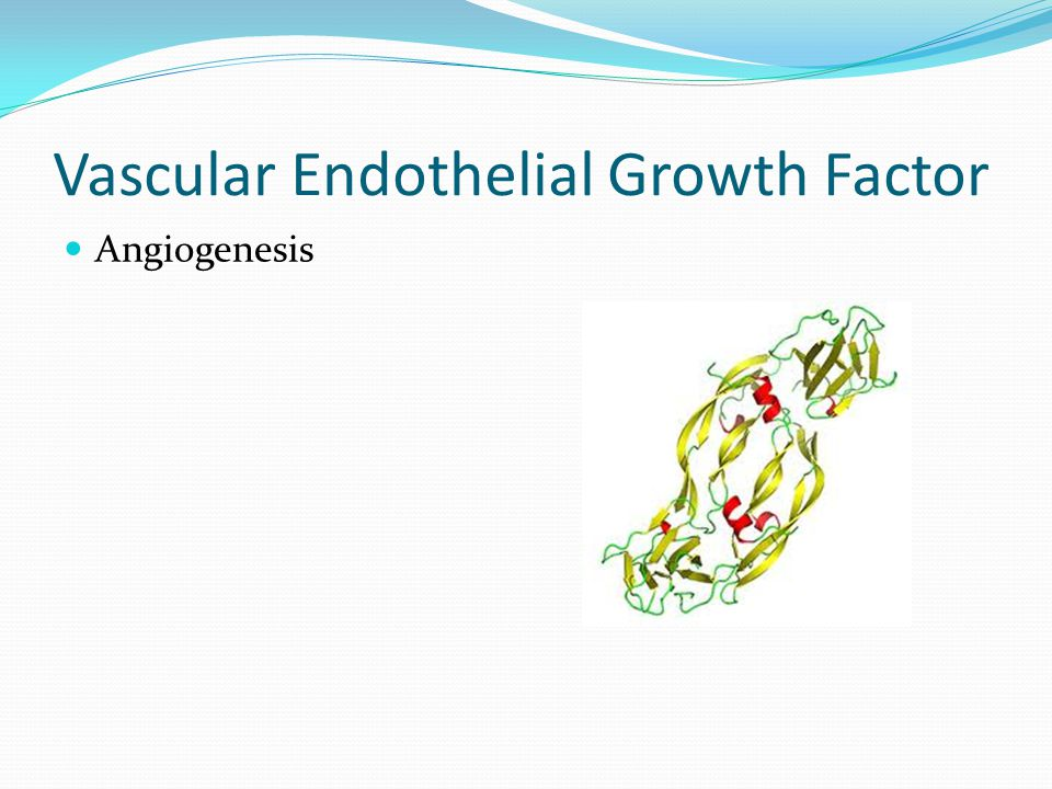 Vascular Endothelial Growth Factor