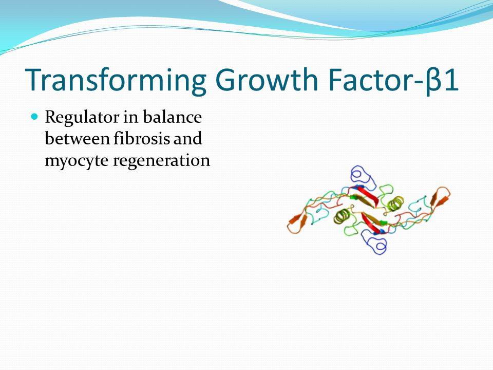 Transforming Growth Factor-β1