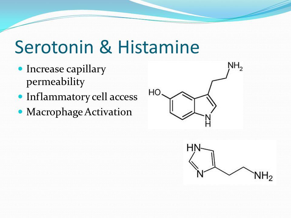 Serotonin & Histamine Increase capillary permeability