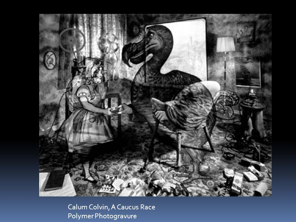Calum Colvin, A Caucus Race Polymer Photogravure