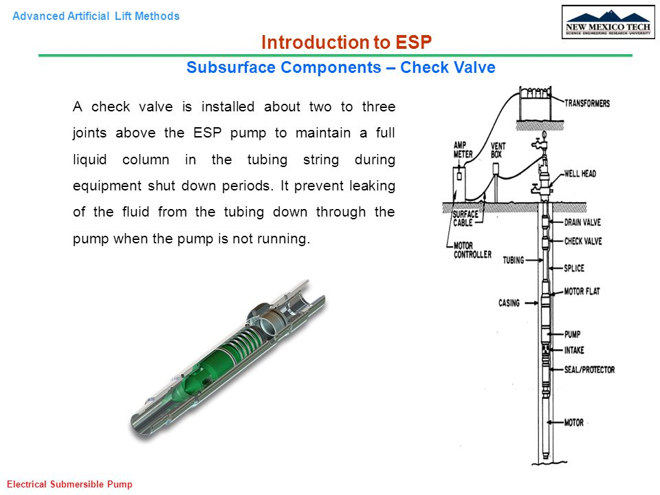 Subsurface Components – Check Valve