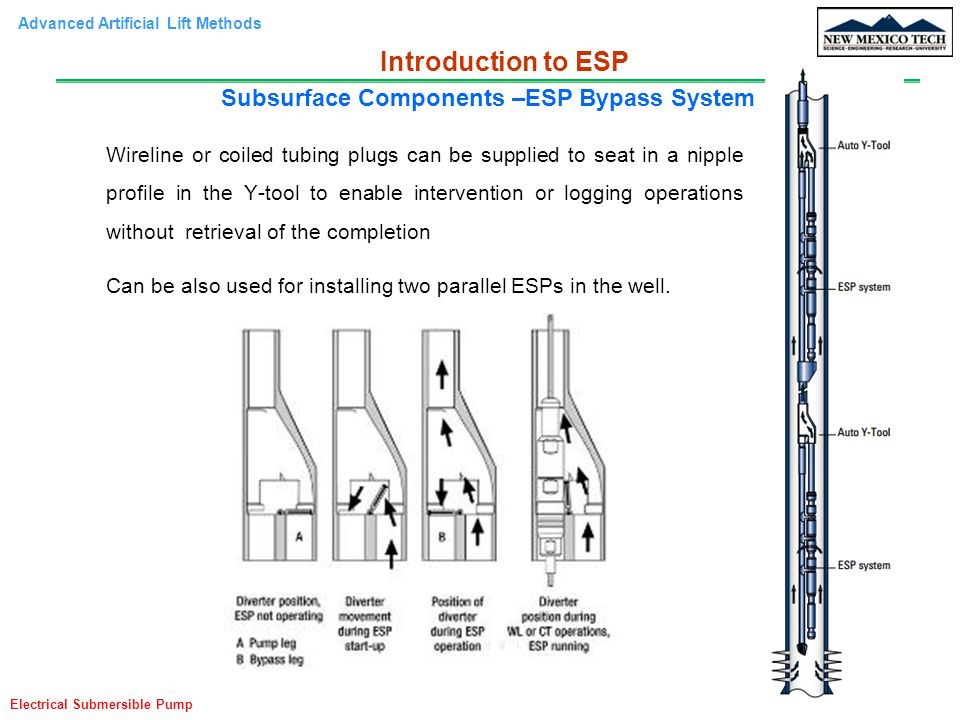 Subsurface Components –ESP Bypass System