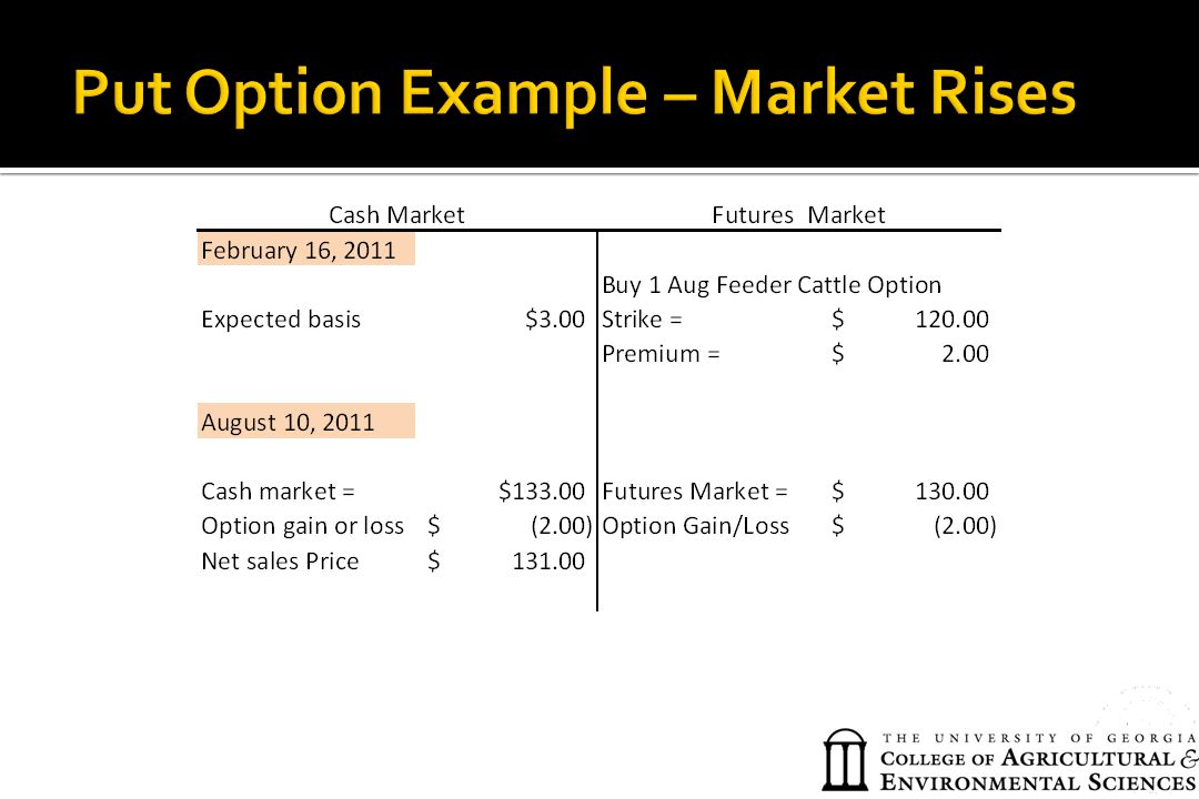 Put Option Example – Market Rises