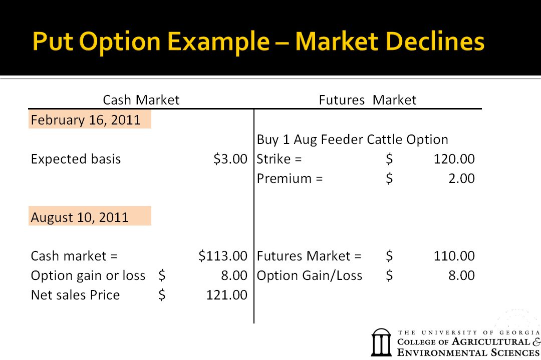 Put Option Example – Market Declines