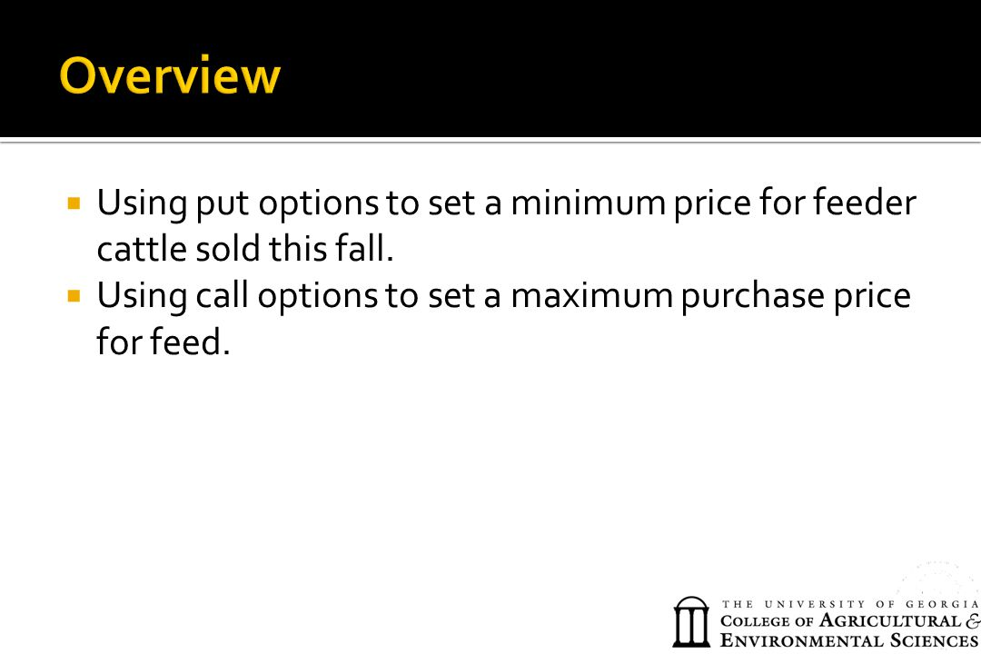 Overview Using put options to set a minimum price for feeder cattle sold this fall.