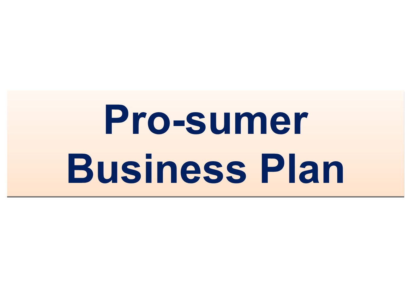 Pro-sumer Business Plan