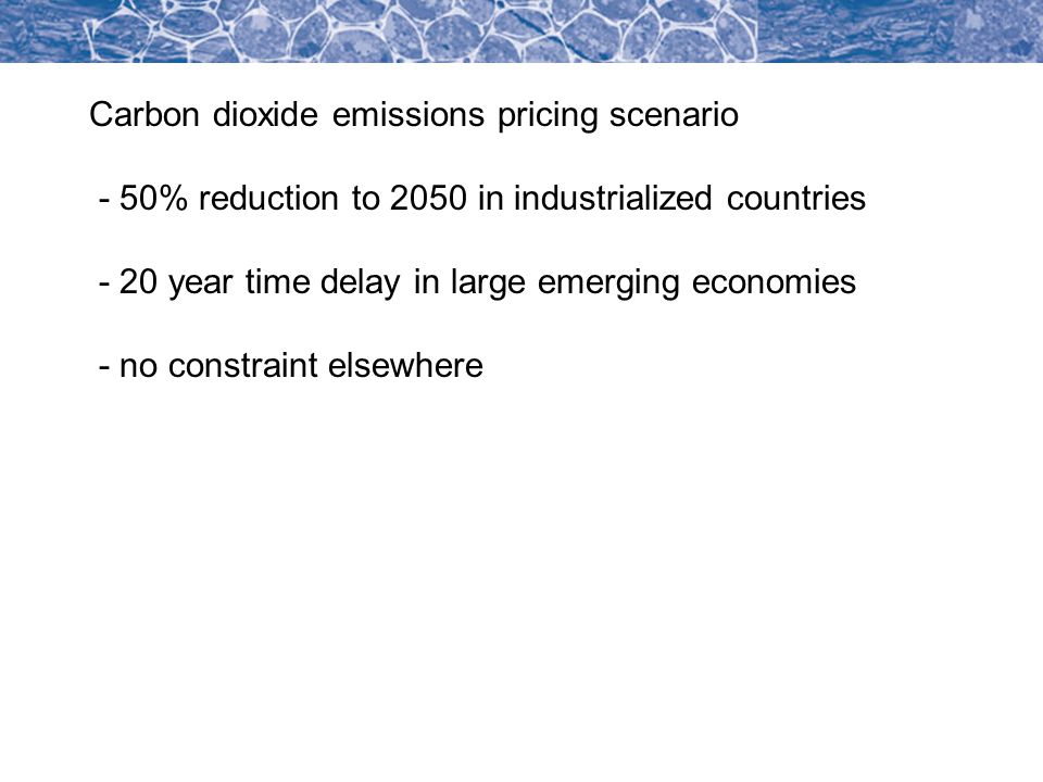 Carbon dioxide emissions pricing scenario