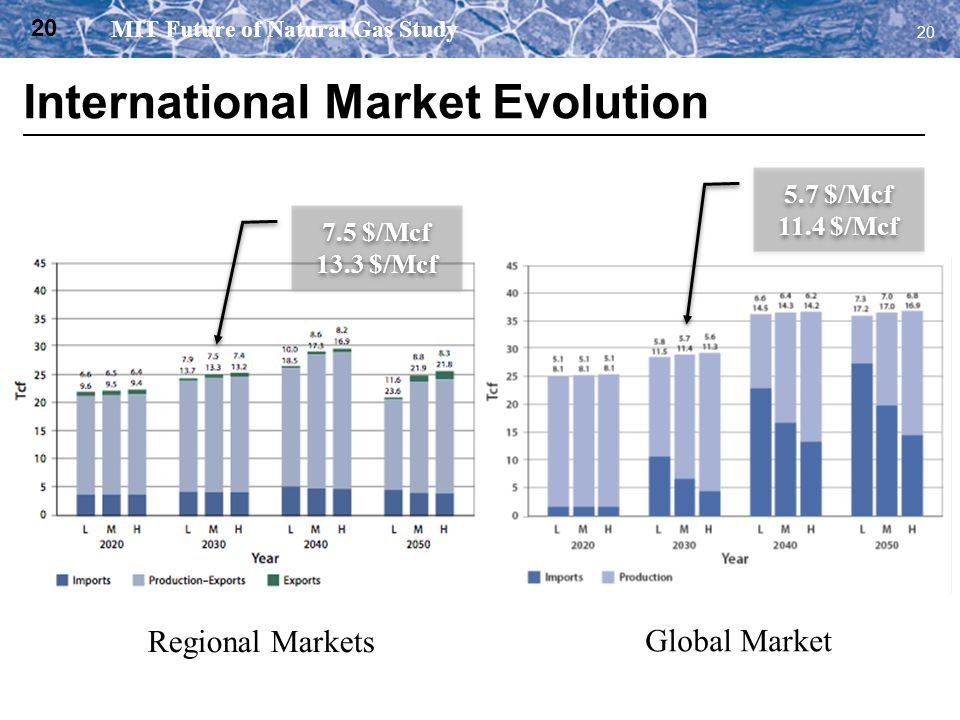 International Market Evolution