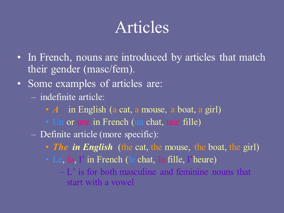 Articles In French, nouns are introduced by articles that match their gender (masc/fem). Some examples of articles are: